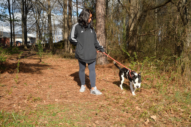 LivingWithDogs2019-14