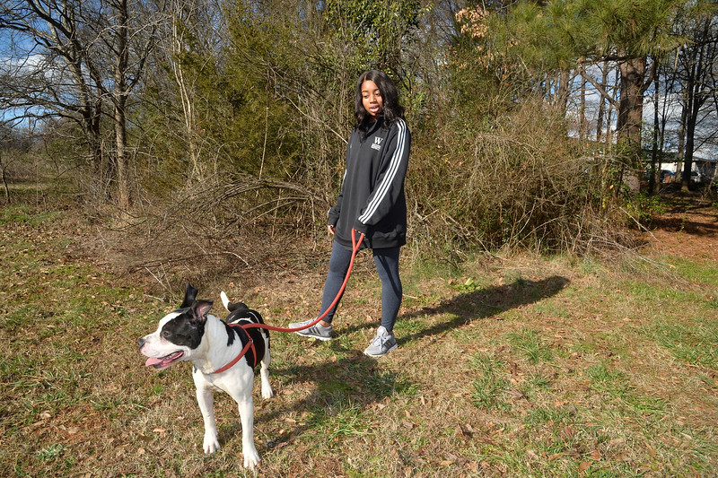 LivingWithDogs2019-5