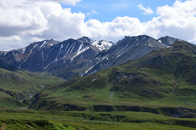 Mid-Summer in the Alaska Range