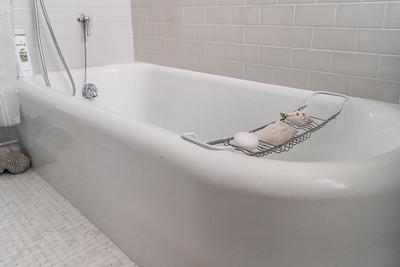 9-2019_Thielen Guest Bath-4