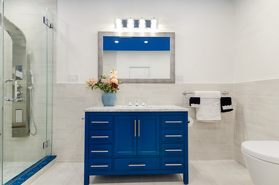 8-2020_Bathroom_Downing St_ETGC-23