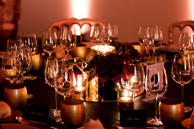VIP Dinner