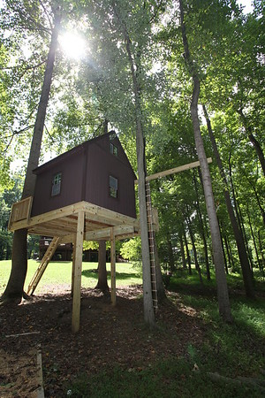 Great Falls Tree House