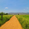 Site Selection - Eagle Running Trail