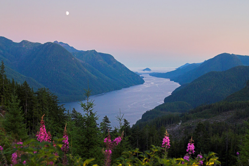 Moon over Tahsis Inlet