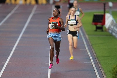 Sydney Athletics Challenge 2014