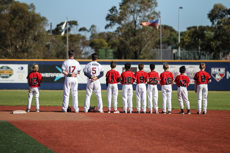 Melbourne Aces Baseball