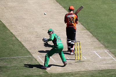Big Bash All Stars Vs Scorchers 2014