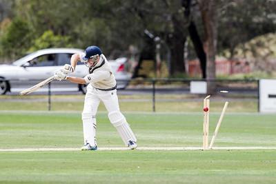 Geelong vs Footscray 2014