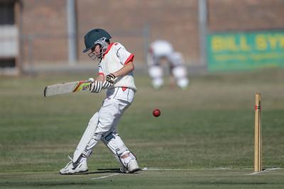 Nagambie Junior Cricket