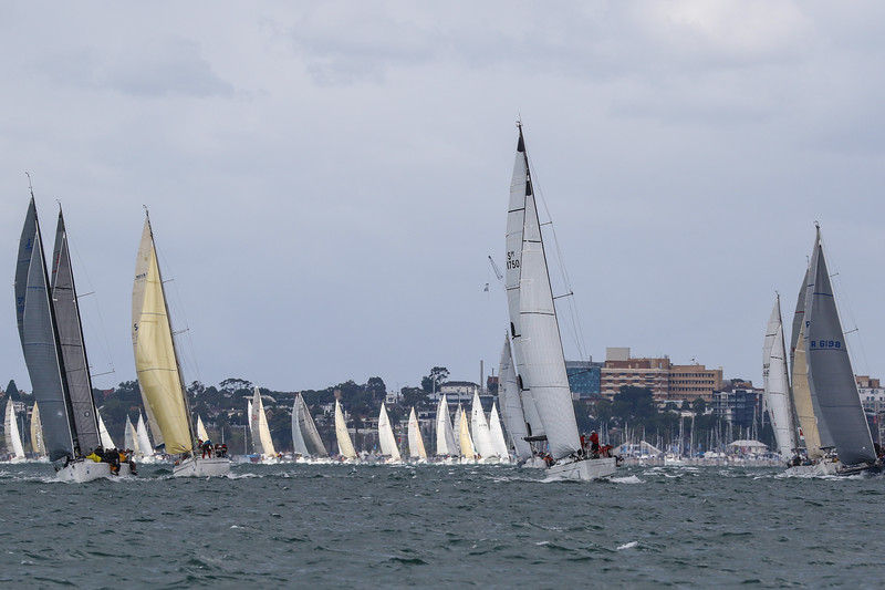 Australia Day Weekend Festival of sails
