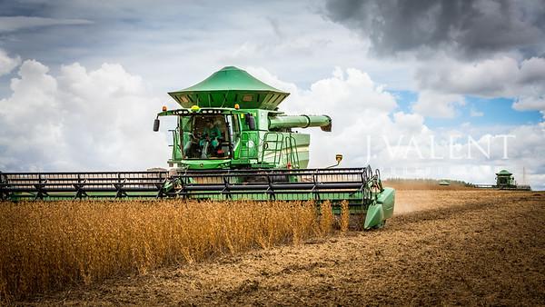 Brazil - A Penn State Extension Soybean Tour