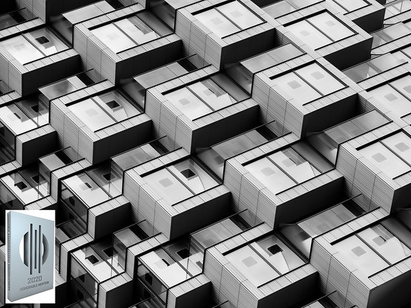 Architectural Genotype
