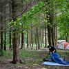 A woodland retreat.