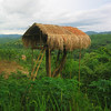 A traditional-style borang (Garo Treehouse) oversees fields and allows one to protect a crop from invading animals. Borangs are also sometimes used as small youth meeting halls.