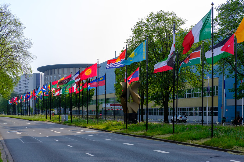 International flags flying along a roadway.