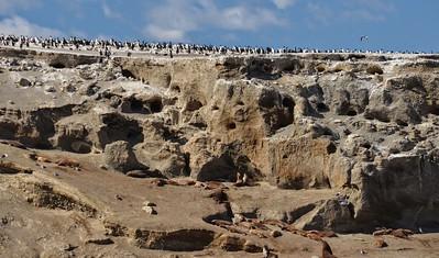 Patagonia_015DSC_3569.jpg