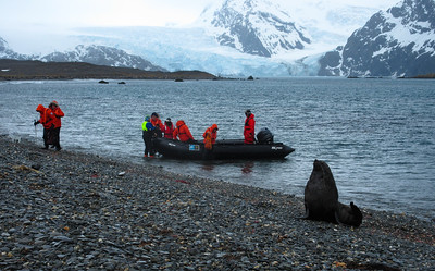 Later that day, the ship moved to the head of King Haakon Bay, and we landed in zodiacs near where Shackleton landed