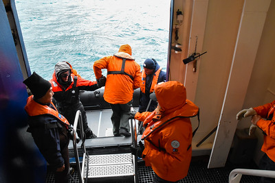 Depending on how rough the seas are, getting into a zodiac can be like stepping off a moving elevator.  You only have one chance to get it right.  Two crew members hold the zodiac in some sort of position and two people help each person on board.