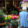 Lady looking at Flowers in front of Flower Shop, Paris, France