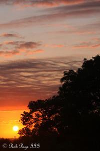 Sunrise over the savanna - Sabi Sabi, South Africa ... March 16, 2010 ... Photo by Rob Page III