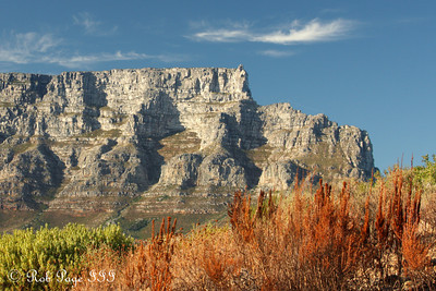 Table Mountain rises above the city - Cape Town, South Africa ... March 11, 2010 ... Photo by Rob Page III