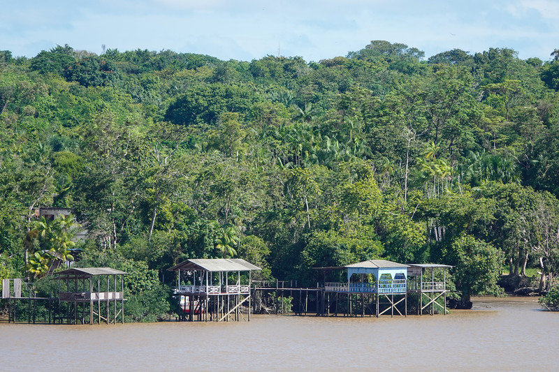 Life along the bank's of the Amazon River.