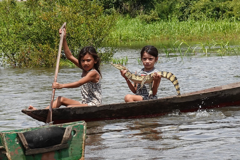 Local river tributary children trying to hustle tips with a a baby Cayman in  the canals near Manaus.