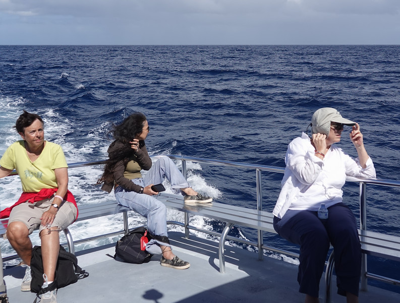 Out to sea whale hunting from Castries, St. Lucia.