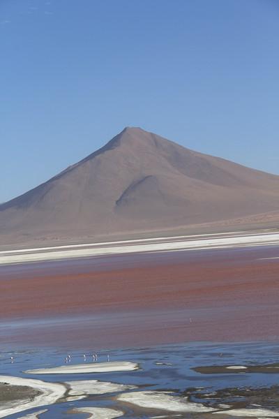 Laguna Colorada (3 of 3)