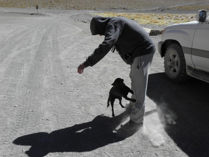 Un Perro Loco Locales (2 of 2)