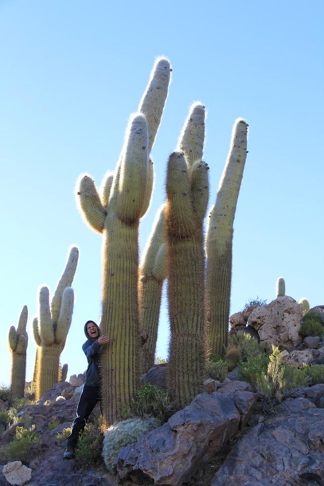 Bosque del Saguaro (1 of 10)