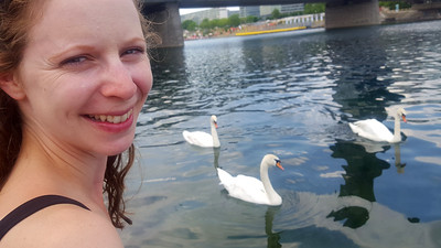 Taking in the swans along the Danube - Vienna, Austria ... June 3, 2017 ... Photo by Rob Page III