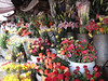 Flower Market in Hoi An