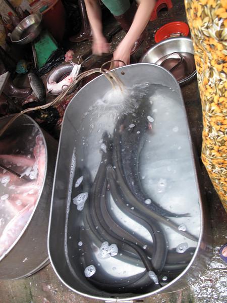 Hanoi Food Market