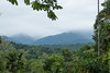 Looking out over the Veragua Rainforest in Costa Rica.