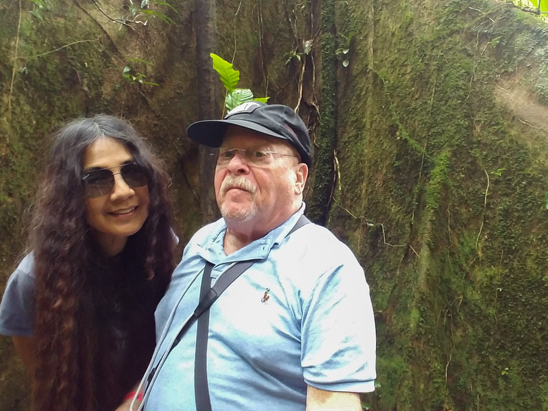 Tourists at a very large tree in the Veragua Rainforest.