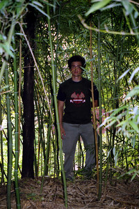 Pedro Mendoza trying to hide out in the bamboo forest. ... August 2, 2004 ... Copyright Robert Page III