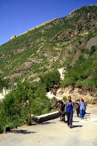 Simatai.  The Great Wall of China stands gaurd over these men as they construct a footpath for tourists to the Great Wall.  They use the donkeys to carry bricks. ... August 3, 2004 ... Copyright Robert Page III