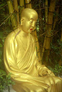 One of the many life size buddhas on the way up nearly 500 steps to the 10,000 buddha monastary.  This is one of the most important religious site in Hong Kong and has nearly 12,000 buddhas of all sizes.  Located in Shatin.  ... July 29, 2004 ... Copyright Robert Page III
