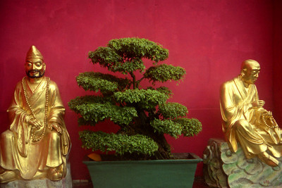 Two of the many buddhas at the monastary of the Temple of 10,000 Buddhas. ... July 29, 2004 ... Copyright Robert Page III