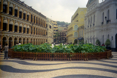 Largo Senado or Senate Square is a wave-like pavement that was created by Portuguese experts in a traditional style found in many parts of Southern Europe. Macau, Pourtugal and the Mediterranean in China. ... July 27, 2004 ... Copyright Robert Page III
