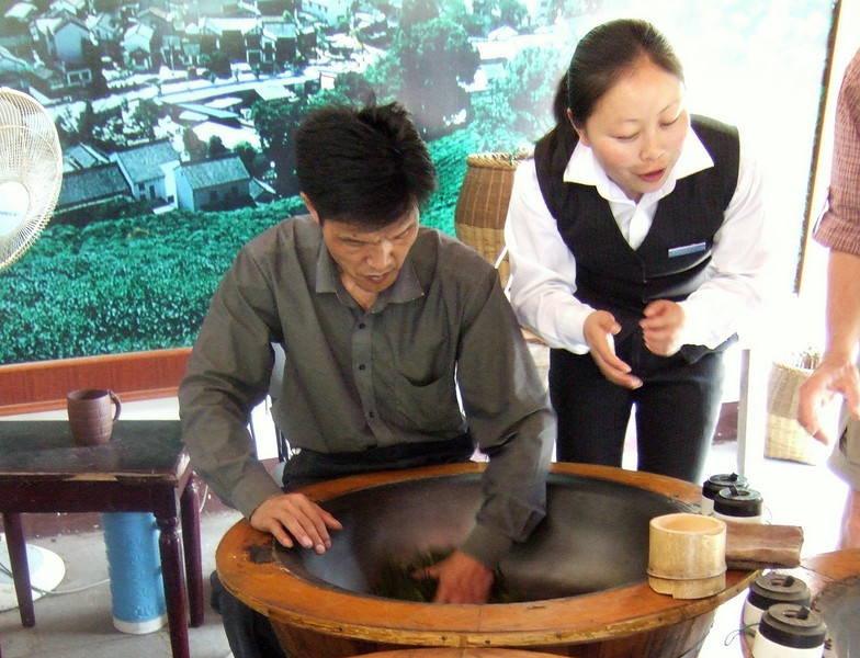 Longjing Tea being dryed by hand at the Dragon Well Tea Plantation