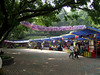 Festival atmosphere at Chongqing Zoo - May Labor Holiday