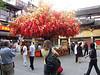Decorative Tree in Yuyan Gardens - Shanghai