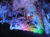 Centipede in Reed Flute Cave - Guilin