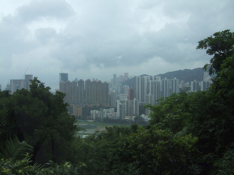 Hong Kong from the Vernicular