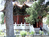 Building in Forbidden City Gardens