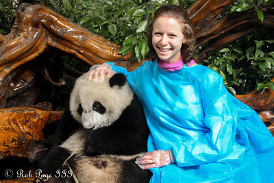 Emily with her panda at the Chengdu Research Base of Giant Panda Breeding - Chengdu, China ... October 5, 2012 ... Photo by Rob Page III