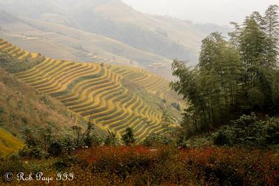Exploring the rice terraces of Longji - Longsheng, Guangxi, China ... October 7, 2012 ... Photo by Rob Page III